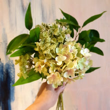 Load image into Gallery viewer, Hydrangeas Posy Bouquet