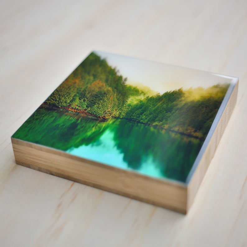 "Little Kicking Bird 4x4"" Bamboo Photo Blocks"