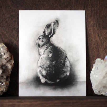Black and White Charcoal Drawing of Hare Rabbit. Postcard Art print by Lauren Gray.