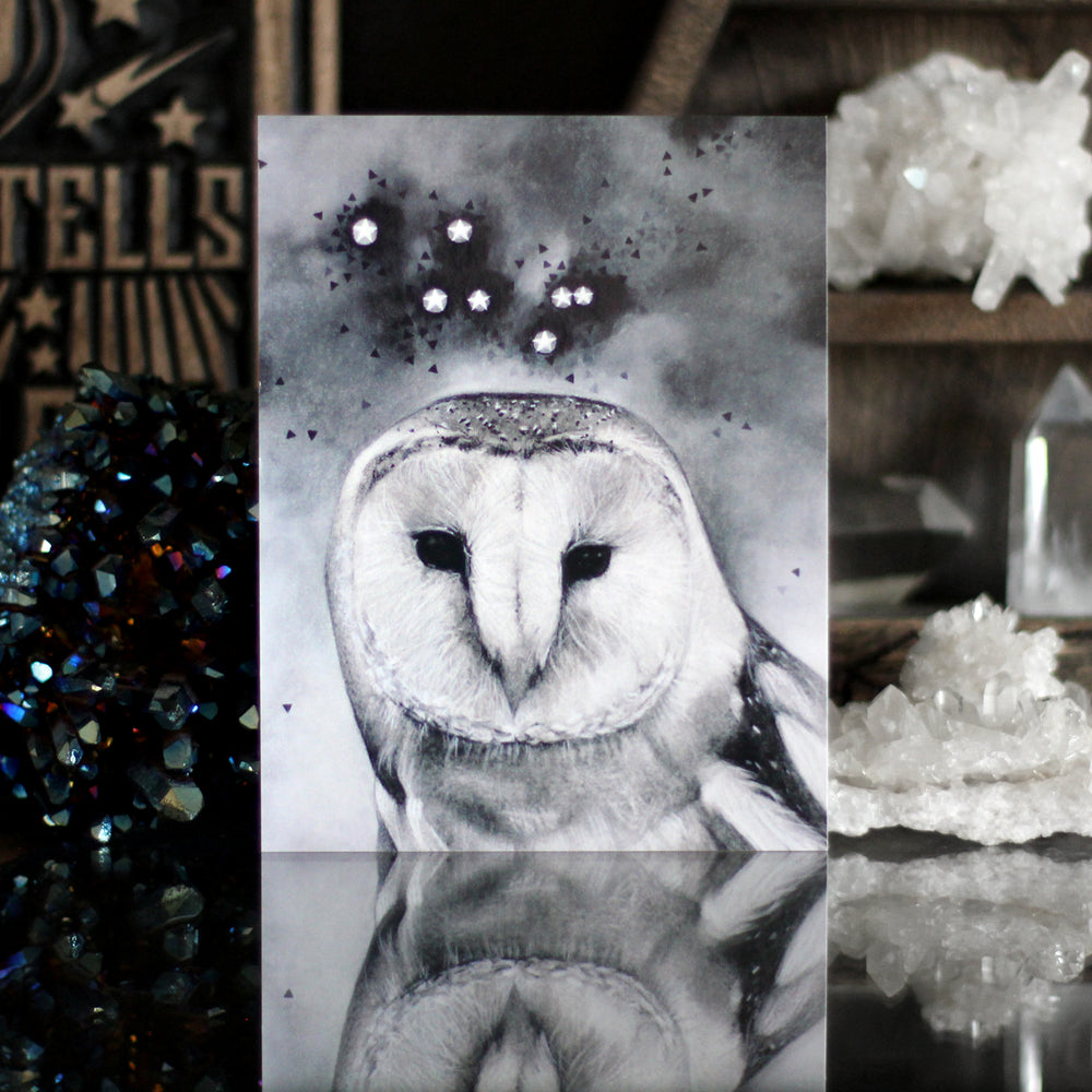 Noctua the Little Owl Constellation Art Postcard Print by Lauren Gray with Stone and Violet.