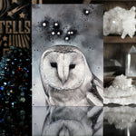 Noctua the Little Owl Constellation - Postcard Print