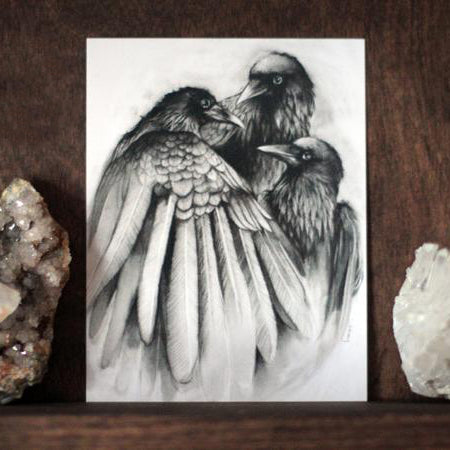 Three Ravens Charcoal Black and White Art Print by Lauren Gray