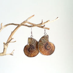 EARRINGS: NATURAL AMMONITE FOSSIL EARRINGS, SOLID .925 STERLING SILVER, HANDMADE AND AVAILABLE EXCLUSIVELY AT ANNA SEE