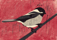 BLACK CAPPED CHICKADEE HAND-CARVED LINOCUT ILLUSTRATION ART PRINT BY ANNA SEE