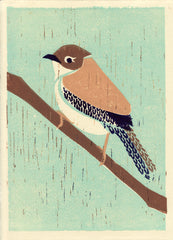 HOUSE WREN HAND-CARVED LINOCUT ILLUSTRATION ART PRINT BY ANNA SEE