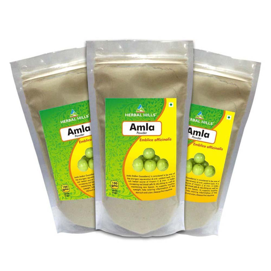 Herbal Hills Amla Powder 100 gms powder