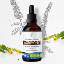 Load image into Gallery viewer, Agrimony Tincture
