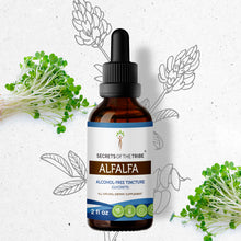 Load image into Gallery viewer, Alfalfa Tincture