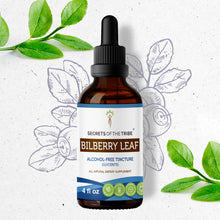 Load image into Gallery viewer, Bilberry leaf Tincture