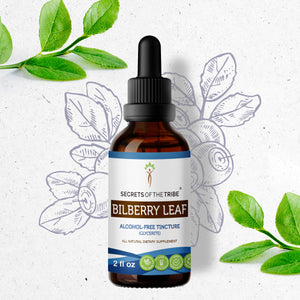 Bilberry leaf Tincture
