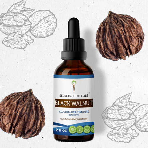 Black Walnut Tincture