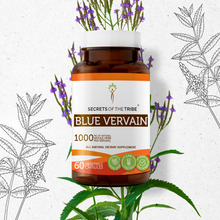 Load image into Gallery viewer, Blue Vervain Capsules
