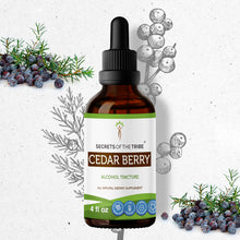Load image into Gallery viewer, Cedar Berry Tincture