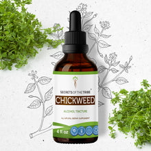 Load image into Gallery viewer, Chickweed Tincture Extract, Organic (Stellaria Media) Dried Above-Ground Parts - secretsofthetribe