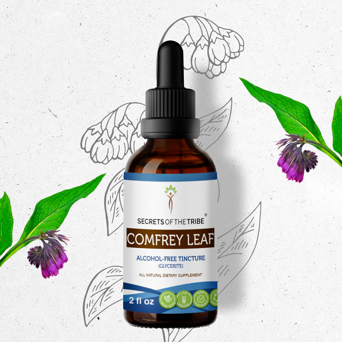 Comfrey Leaf Tincture Extract, Organic (Symphytum Officinale) Dried Leaf - secretsofthetribe