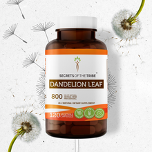 Load image into Gallery viewer, Dandelion Leaf Capsules