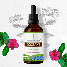 Load image into Gallery viewer, Dogbane Tincture