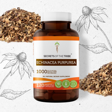 Load image into Gallery viewer, Echinacea Purpurea Capsules