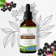 Load image into Gallery viewer, Elder Berries Tincture