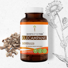 Load image into Gallery viewer, Elecampane Capsules
