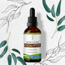 Load image into Gallery viewer, Eucalyptus Tincture