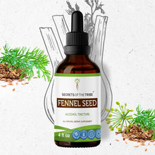 Load image into Gallery viewer, Fennel Seed Tincture
