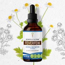 Load image into Gallery viewer, Feverfew Tincture Extract, Organic (Tanacetum parthenium) Dried Herb - secretsofthetribe