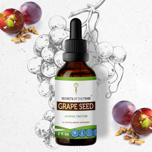 Grape Seed Tincture Extract, Organic Grape (Vitis Vinifera) Dried Seed - secretsofthetribe