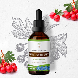 Hawthorn Berry Tincture Extract, Organic Crataegus spp. Beneficial for Heart Health - secretsofthetribe