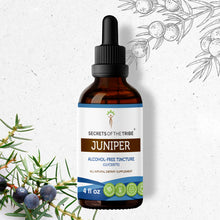 Load image into Gallery viewer, Juniper Tincture