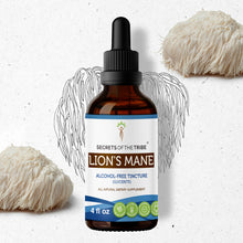 Load image into Gallery viewer, Lion's Mane Tincture