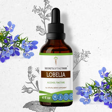 Load image into Gallery viewer, Lobelia Tincture