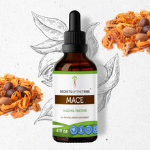 Load image into Gallery viewer, Mace Tincture Extract, Organic Mace (Myristica fragrans) Dried Aril - secretsofthetribe