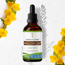 Load image into Gallery viewer, Mullein Leaf Tincture Extract, Organic Mullein (Verbascum Densiflorum) Dried Leaf - secretsofthetribe
