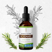Load image into Gallery viewer, Rosemary Tincture