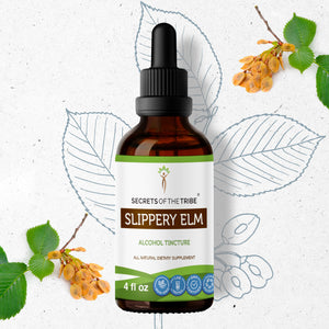Slippery Elm Tincture