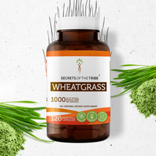 Load image into Gallery viewer, Wheatgrass Capsules