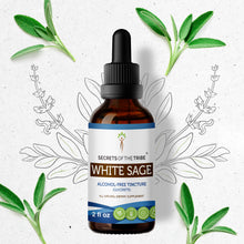 Load image into Gallery viewer, White Sage Tincture