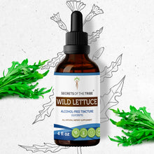 Load image into Gallery viewer, Wild Lettuce Tincture
