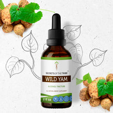 Load image into Gallery viewer, Wild Yam Tincture