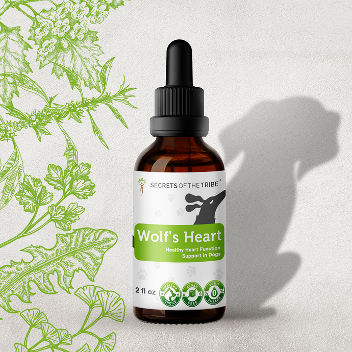 Wolf's Heart. Healthy Heart Function Support in Dogs