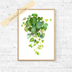 Dancing Hearts - I painted this for all the plant lovers! These hanging greens will make a fantastic centre piece for any room.