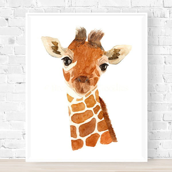 Keeley the Baby Giraffe