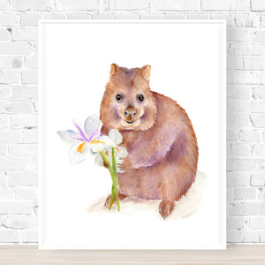 Kira the Quokka