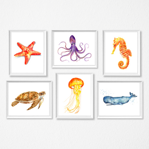 Sea Life Set of 6 Prints