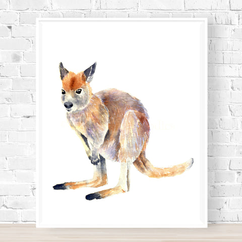 Warren the Wallaby Print