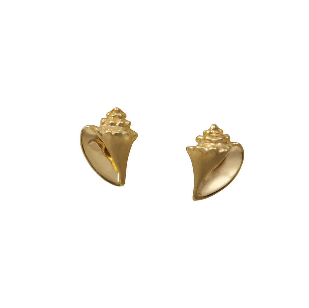 14k Yellow Gold Small Conch Earrings