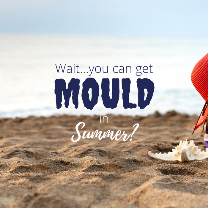 What to do about mould removal in summer