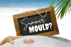 What to do about removing mould in summer