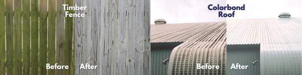 Image of before and after images of an algae affected timber fence and a mould affected colorbond roof.